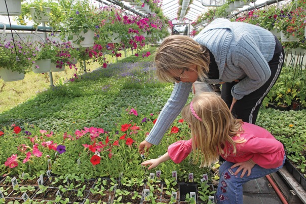Kristen Bouchard of Bristol with her four-year-old daughter Sophia, pick out flowers for their garden, on Mother's Day at Zarrella Farms in Plainville. (5/10/09)